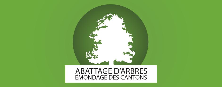 abattage arbre mondage des cantonsabattage arbre patrick bessette. Black Bedroom Furniture Sets. Home Design Ideas